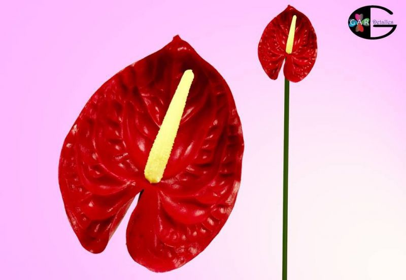 *56cm pu anthurium reversed