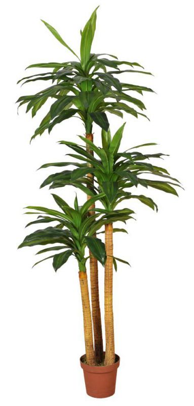 DRACENA ARTIFICIAL EN MACETA 170CM