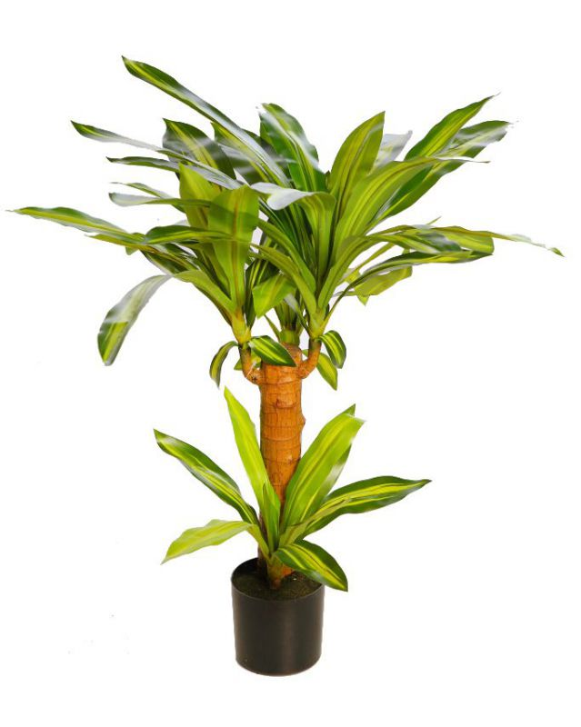 DRACENA ARTIFICIAL EN MACETA 80CM