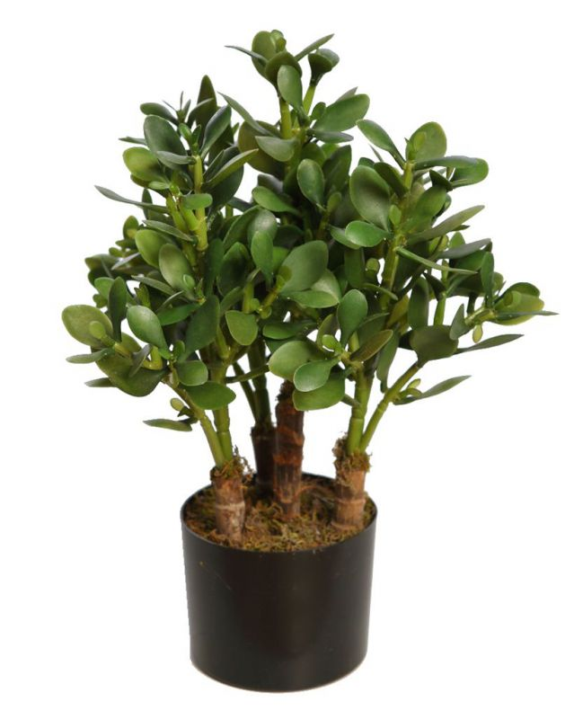 PLANTA CRASA ARTIFICIAL CON MACETA 50CM