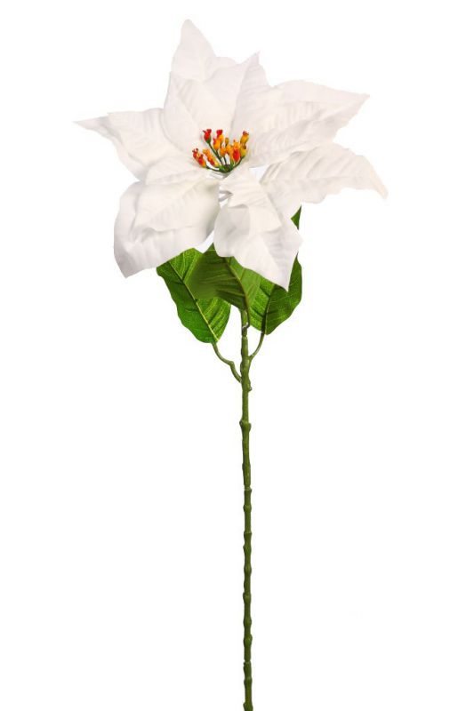VARA POINSETTIA 70CM color blanco