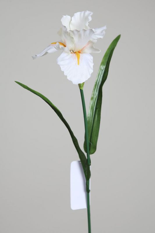 VARA IRIS ARTIFICIAL 62CM COLOR BLANCO