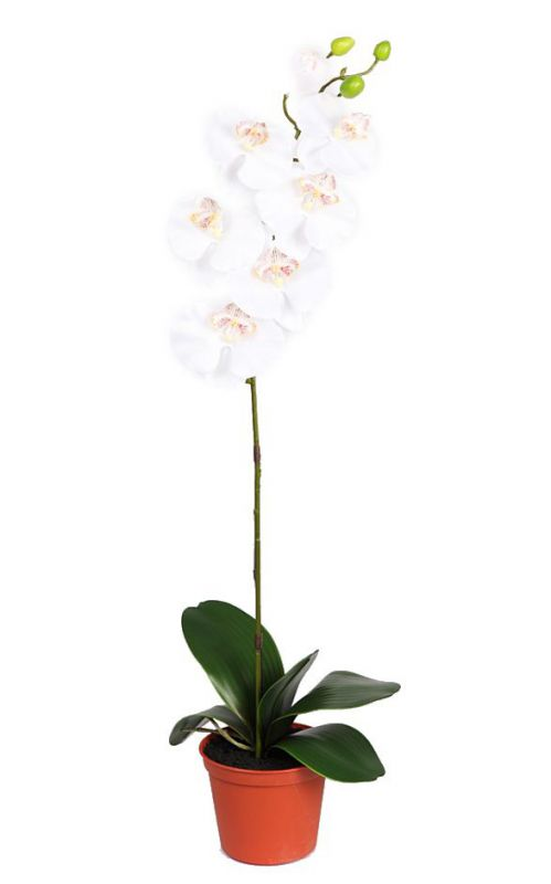 MACETA ORQUIDEA ARTIFICIAL DE SATEN 75 CM. MACETA INCLUIDA