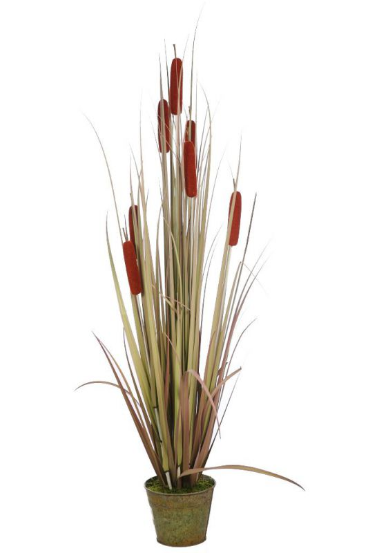 Planta typha purito artificial 125cm